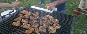 family picnic_food